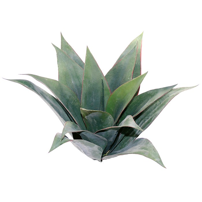 Agave grün 45 cm Kunstpflanzen