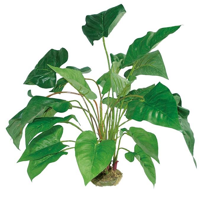 Dragon Terrarium Kunstpflanze Anthurium mit Moosfuß, 45 cm Kunstpflanze