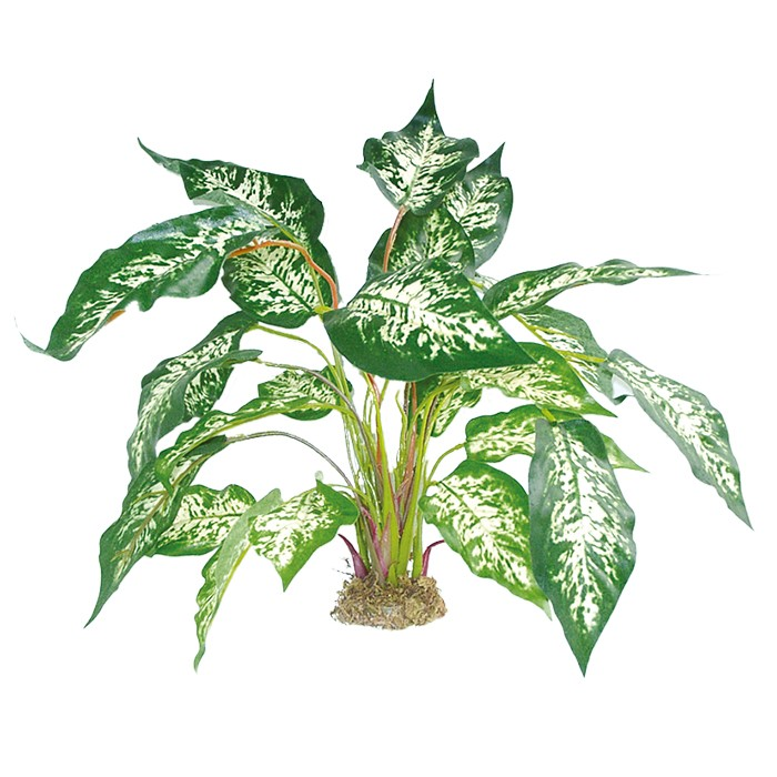 Terrarium Kunstpflanze Dieffenbachia mit Moosfuß ca. 45 cm