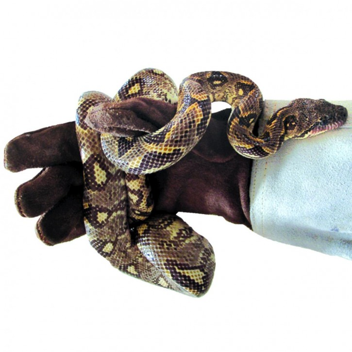 Dragon Lederhandschuh Schutzhandschuh Fanghandschuh aus Wildleder