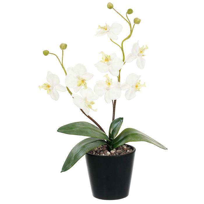 Terrarium Kunstpflanze Orchidee mit Laub u. Blütenrispe weiß 45 cm