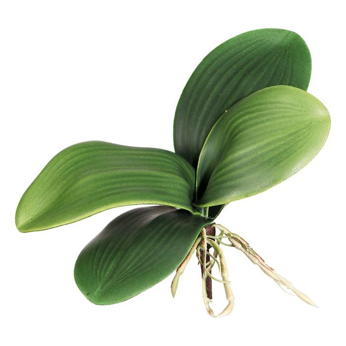 Terrarium Kunstpflanze  Orchideenlaub ca. 20 cm, 4 Blatt