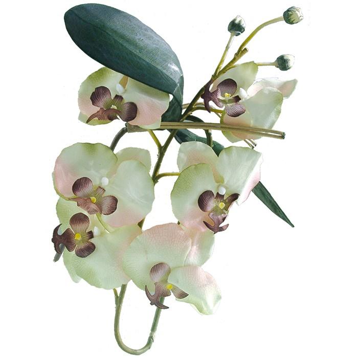 Terrarium Kunstpflanze Orchideenzweig mit Blüten creme-weiß 80 cm