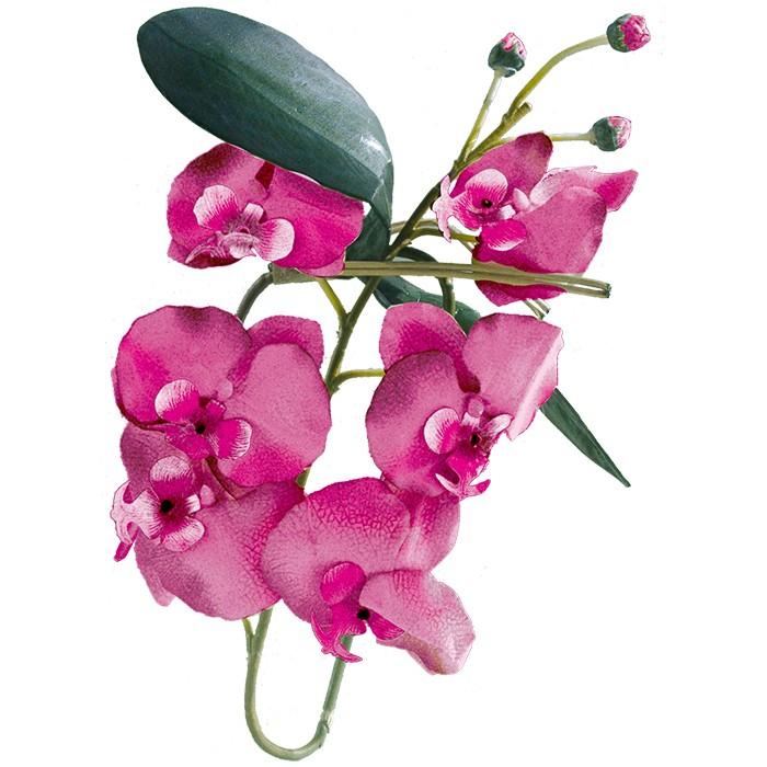 Terrarium Kunstpflanze Orchideenzweig mit Blüten bordeaux-rot 80 cm