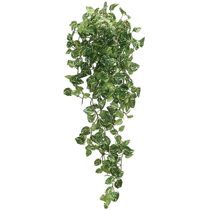 Terrarium Kunstpflanze Pothosranke grün-weiß 50 cm