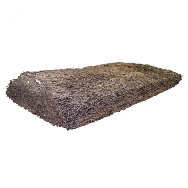 Dragon Xaxim Platte Baumfarn in 2 versch. Größen Rückwand für Terrarium