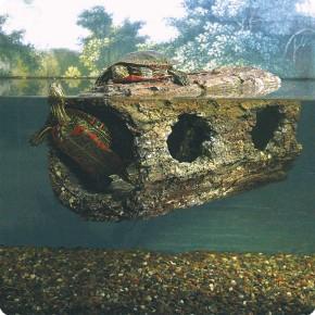 Zoo Med Floating Turtle Log schwimmender Baumstamm